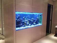 Aquarium In Wand Integrieren Custom Aquariums Huntington Aquarium Maintenance Pond