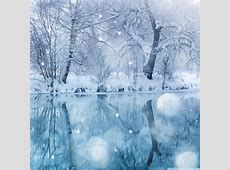 Winter Wonderland Desktop Background ·? WallpaperTag