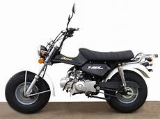 skyteam t rex skyteam skyteam t rex 125 moto zombdrive