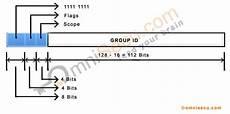 multicast ipv6 address format prefix flags and scope