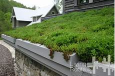 toit terrasse vegetal cr 233 er soi m 234 me une toiture v 233 g 233 talis 233 e