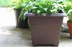vasi in plastica grandi dimensioni fioriere in plastica arredo giardino caratteristiche