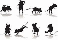 mouse silhouette collection schattentheater vorlagen