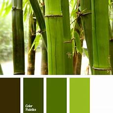 color of bamboo color palette ideas