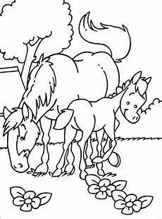 ausmalbilder pferde mit fohlen kostenlos malvorlagen zum