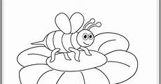 Gambar Foto Hewan Gambar Lebah Untuk Diwarnai