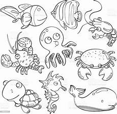 cutie marine animals stock illustration image