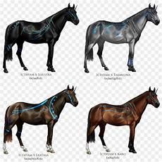 Mewarnai Gambar Kuda Dan Keledai Mewarnai Gambar Baru