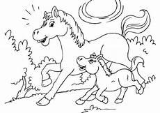 ausmalbilder pferde mit fohlen ausmalbilder