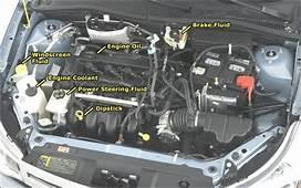 Show Me Tell Engine Diagram  Automotive Parts