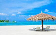 maldives indian ocean sun loungers and palm trees straw