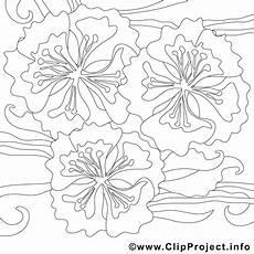 Blumen Malvorlagen Ausdrucken Blumen Malvorlagen Zum Ausdrucken