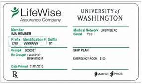 Do You Need An Insurance Card  International Student