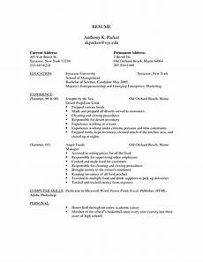 free resume templates professional cv format printable