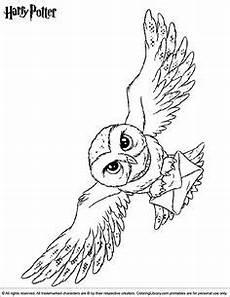 Eule Hedwig Malvorlage Hedwig Harry Potter S Owl Coloring Page Malvorlage Eule