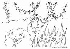 Malvorlagen Urwald Gratis Affe Im Dschungel Nadines Ausmalbilder
