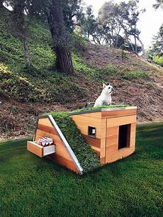 solar powered dog house with green roof