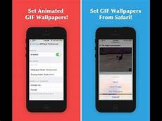 Iphone Gif Wallpaper by How To Set A Gif As Your Wallpaper Home Screen And Lock