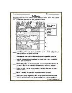 earth science geologic history worksheet 13315 geology worksheets and printable activities earth science lessons earth space science