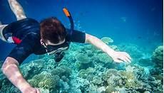 best 5 snorkeling spots in california helpful guide globo surf