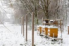 Bienen Im Winter Heppenheimer Stadthonig Bruchseebienen