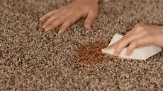 ways to get rid of carpet mold international inside