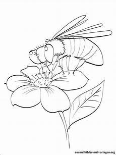 Malvorlage Biene Und Blume Malvorlage Biene Und Blume Zeichnen Und F 228 Rben