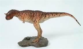 Abelisauridae Genus Carnotaurus Species Sastrei
