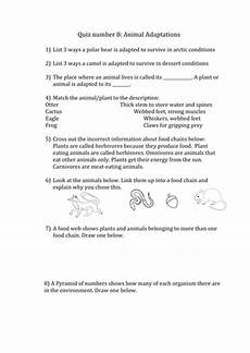biology animal adaptations by greenapl uk teaching resources tes