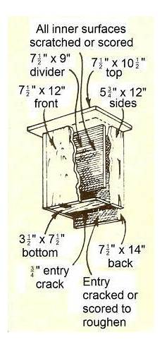 bat conservation international bat house plans build a bat house for natural pest control build a bat