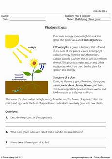 ks2 science worksheet photosynthesis by primaryleap teaching resources