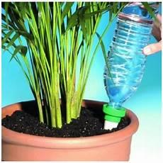 comment arroser ses plantes pendant les vacances comment arroser pendant les vacances guide complet
