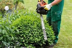 was kostet ein gärtner leicester gardening services get a free quote now