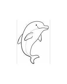 delfine kostenlose malvorlage zum ausmalen