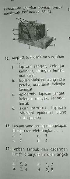Gambar Berikut Untuk Menjawab Soal Nomor 12 Sai 14