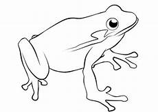 Frosch Ausmalbild Kostenlos Ausmalbilder Zum Drucken Malvorlage Frosch Kostenlos 2
