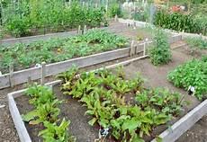Gemüsebeet Anlegen Ideen - community gardens aim to educate whistler question