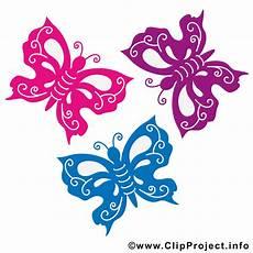 Malvorlagen Schmetterling Lustig Bunte Schmetterlinge Bild Sommer Bilder Gratis