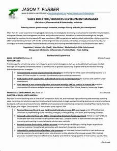 business development manager resume exle distinctive
