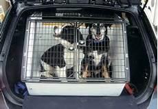 gabbia per cani per auto gabbie cani auto accesori gabbie cani auto comprare