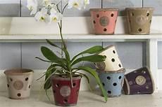 orchidea vaso trasparente vasi per orchidee vasi da giardino vaso orchidea