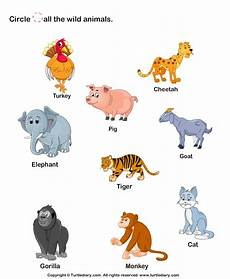 nature and animals worksheets 15101 and print turtle diary s identify animals worksheet our large collection of