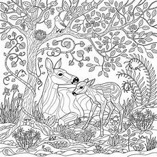 Sketsa Gambar Mewarnai Pemandangan Hutan Hitam Putih