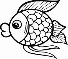 fish coloring pages at getcolorings free
