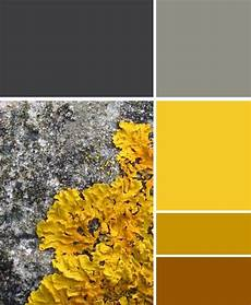 this colour scheme is great the beauty of nature the grey tones work excellently with the
