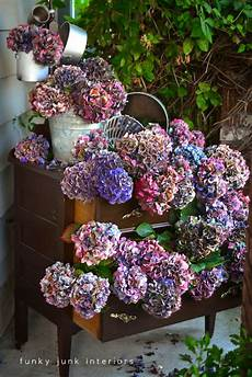 getrocknete hortensien dekorieren dried hydrangea dresser outdoors funky junk