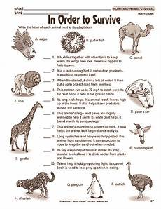 animal adaptations worksheets middle school 13966 pin by gisler on edrd science worksheets animal adaptations science biology