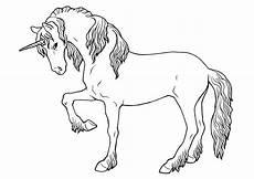Unicorn Malvorlagen Kostenlos Ausmalbilder Einhorn Pummel Einhorn Zum Ausmalen
