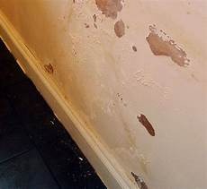 nasse wand trocknen water seepage repair denver colorado rapid foundation