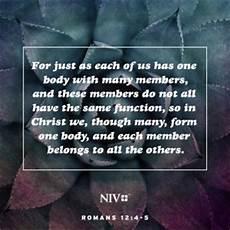 niv verse of the day romans 12 4 5